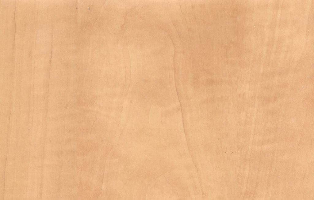 color swatch maple